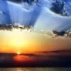 NVAX.-Novavax Inc…..¡El sol se puso!, pero ¡AMANECERÁ DE NUEVO!….(Actu…17/11/2016)